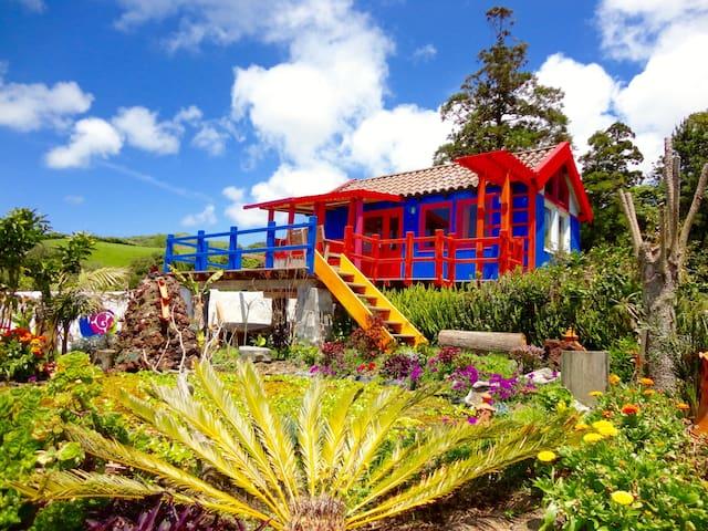 Casa Banana colorful cabin Azores - Ponta Delgada - Cabana