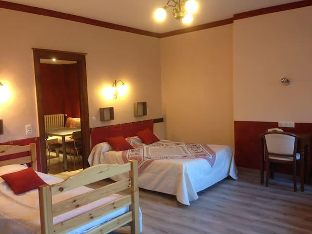 Appartement Chaleureux quartier thermal Luz - Luz-Saint-Sauveur - Apartemen