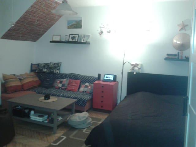 Podkrovní byt v Příbrami - Příbram