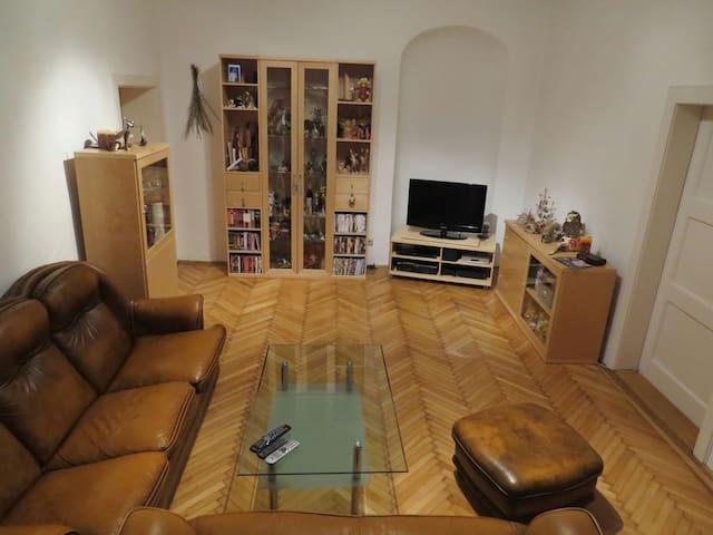 Entire Apartment in the city center - Wiener Neustadt - Apartamento