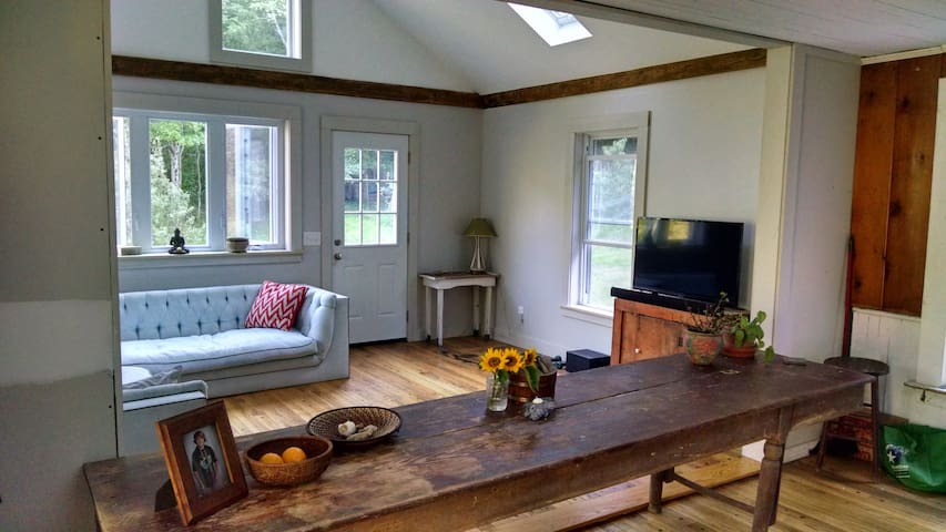 Country Cozy Retreat - Brooktondale - House