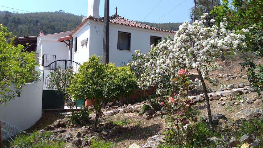 Casa da Milhariça - Figueiró dos Vinhos - Casa