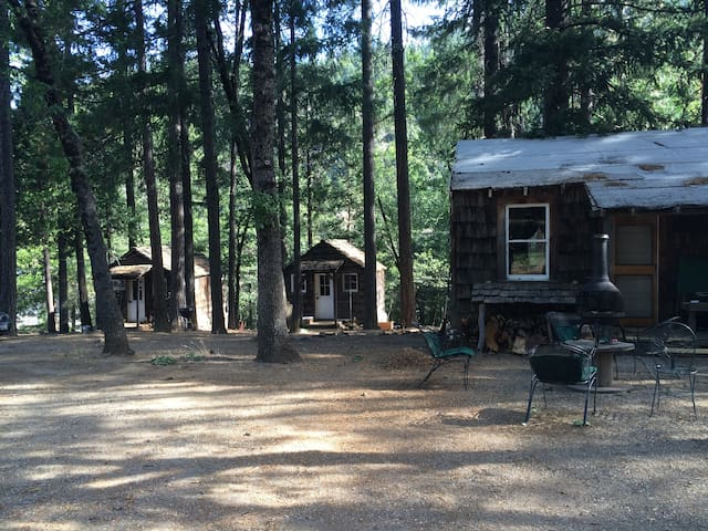 Rustic cabin in the Woods II - Paxton - Cabana