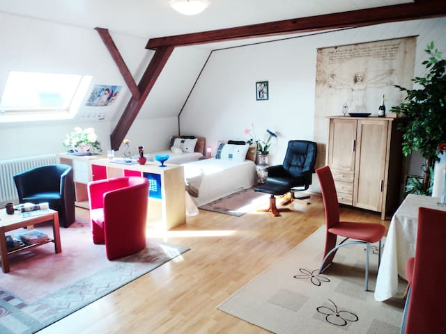 Luxury flat in Southern Germany - Langenenslingen - Hus