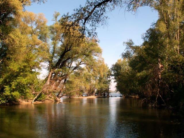 Sziget nyaraló - Taksony - Kulübe
