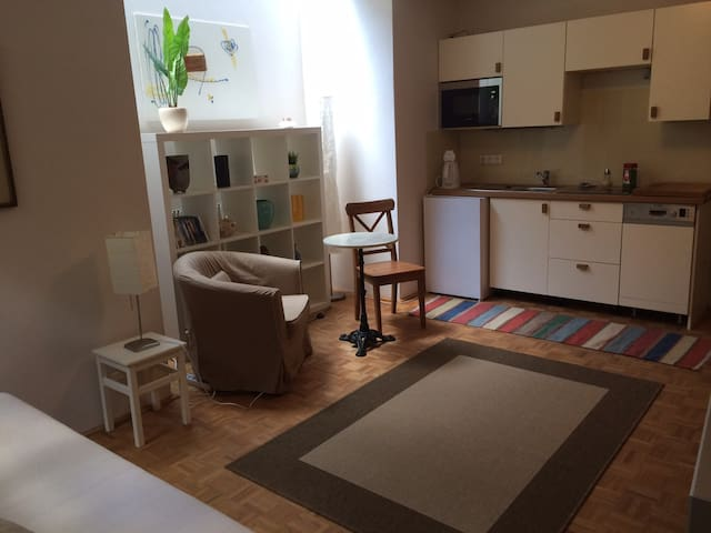 studio apartment in private house - Зальцбург - Дом