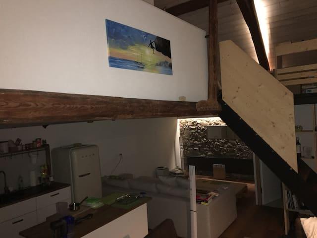Chalet/Loft - ambiance chaleureuse ancien/moderne - La Brillaz - Лофт