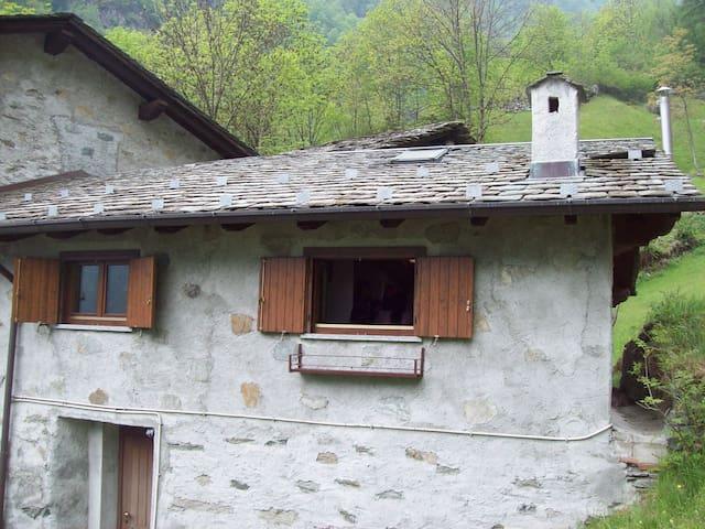 small flat into the woods - Torre di santa maria - Departamento