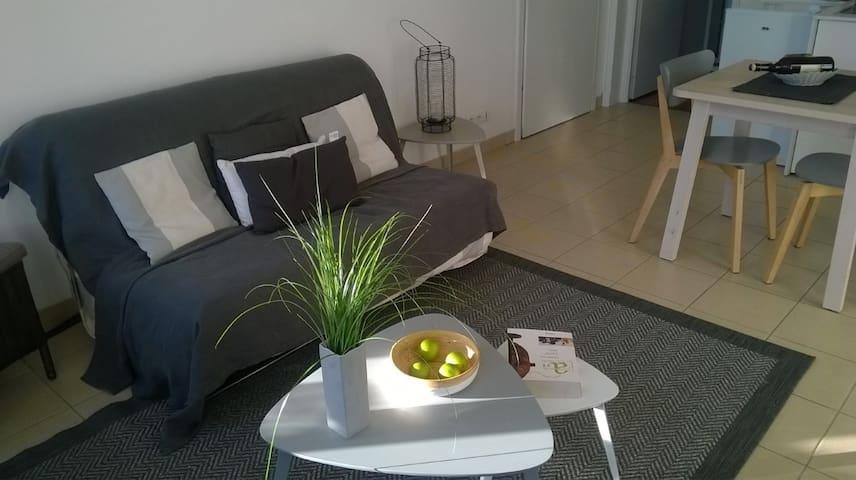 Appartement de charme lumineux et sans vis à vis - Saint-Omer - Leilighet