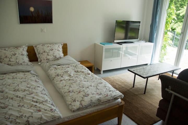 Schöne Einzimmer Wohnung mit Aussicht - Balsthal - Appartement