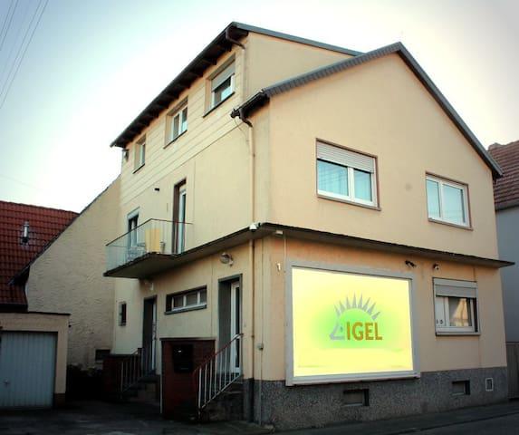 Ferienwohnung-Kurpfalz - Urlaub inmitten der Pfalz - Böhl-Iggelheim - Huis