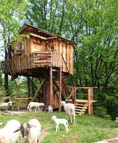 TreeHouse Toplak - Sveti Duh na Ostrem Vrhu - Ağaç Ev