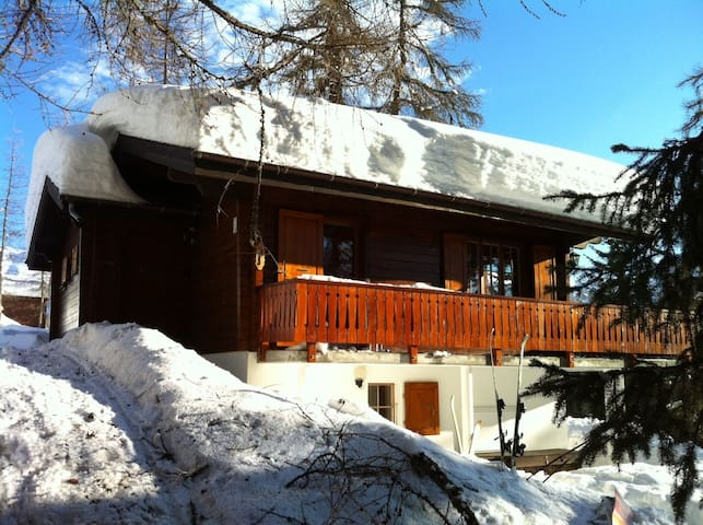 Lovely chalet in sunny Bellwald - Bellwald - House
