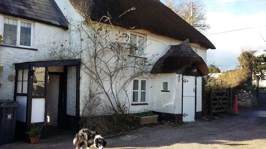 Pretty Picturesque Thatched Cottage - Cotleigh - Huis