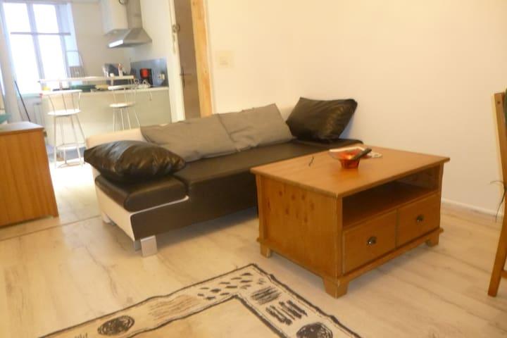 Grand appartement indépendant hyper centre ANNONAY - Annonay - Lakás