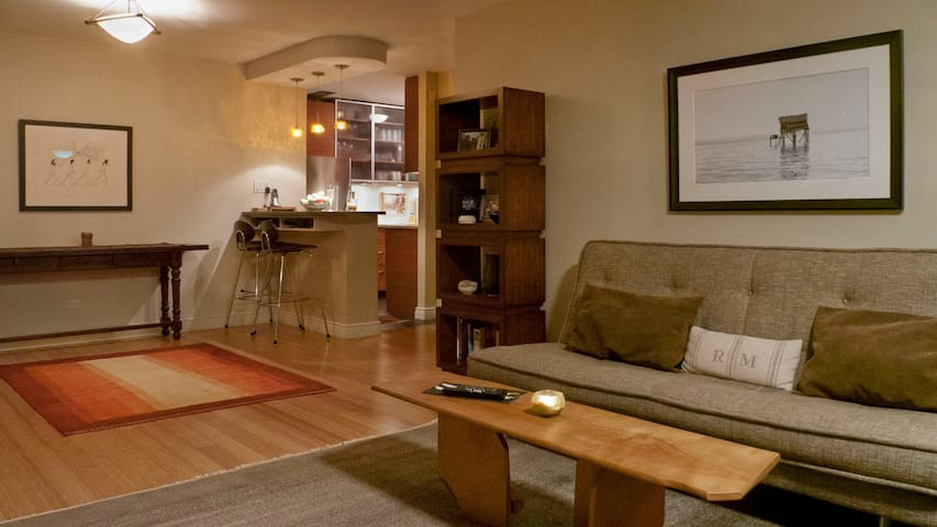 Modern spacious flat in Manhattan - 紐約