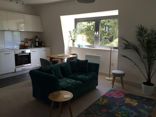 Contemporary apartment near Castle & The Long Walk - Windsor - Apartament