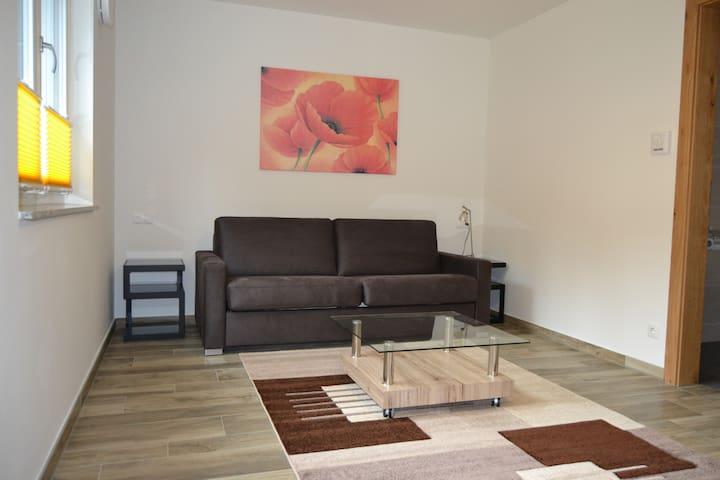 Studio Apartment near Ski Gondola - Scheffau am Wilden Kaiser - Daire