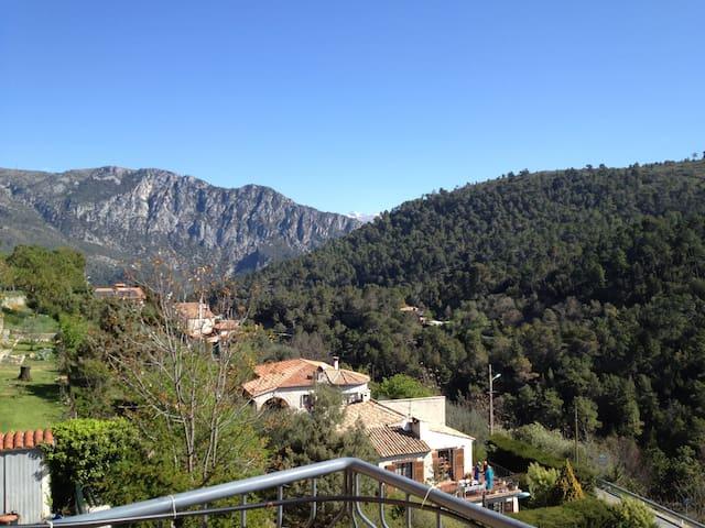 Maison de charme dans l'arrière pays de Nice - Levens - Villa