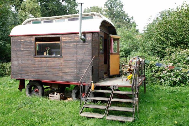 Geheimtipp, wunderschöner kleiner Zirkuswagen - Wenzendorf