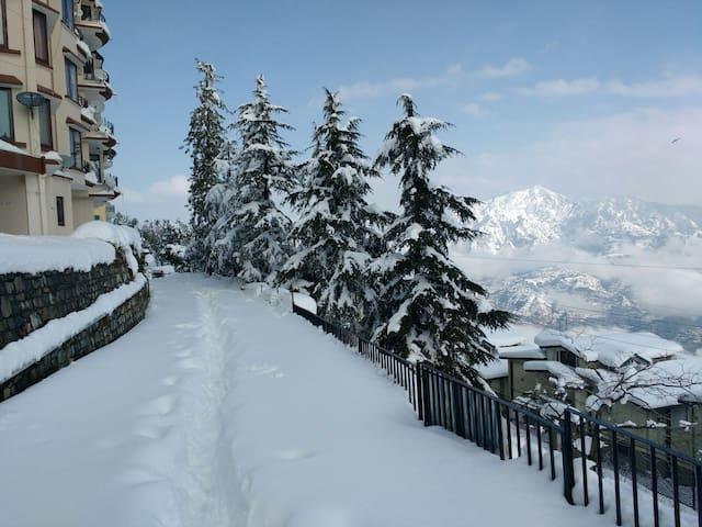 2BR flat in Mashobra with amazing views. - 西姆拉(Shimla)