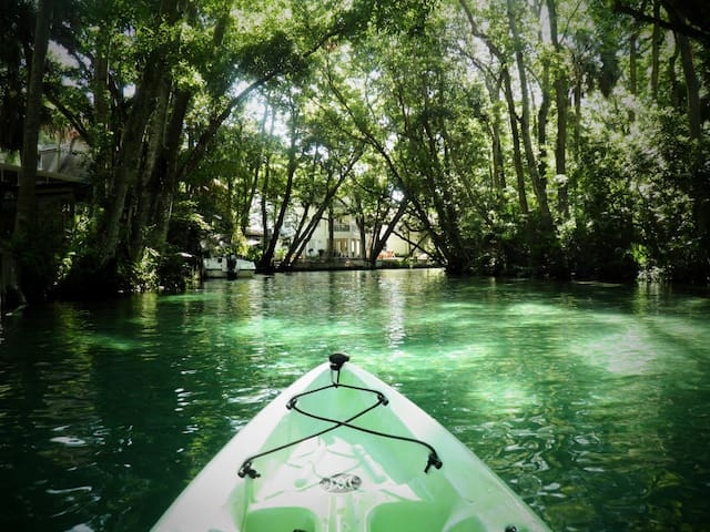 SEA COW RIVER HOUSE - KAYAKS AND CANOES INCLUDED! - Weeki Wachee