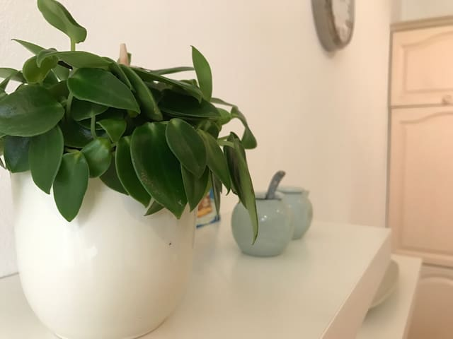 Lovely, comfy apartment - a home away from home - 's-Hertogenbosch - Apartemen