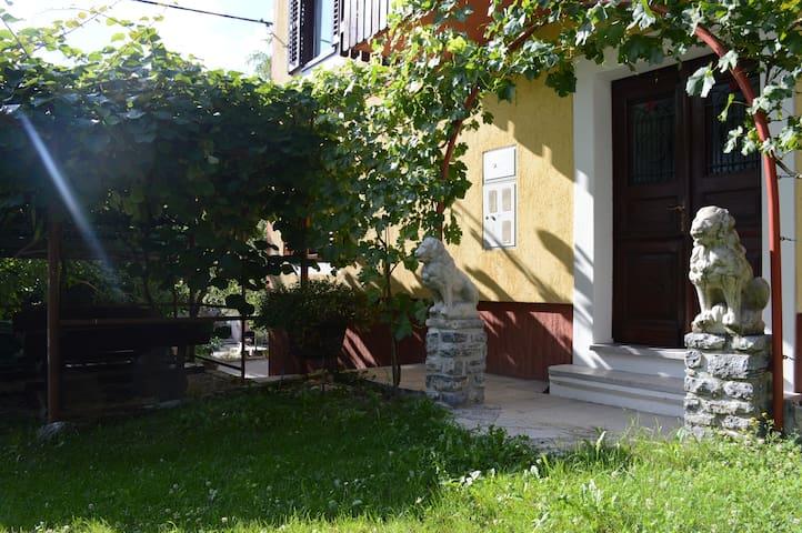 Private room in Modrej near beautiful Soča river - Modrej - Otros