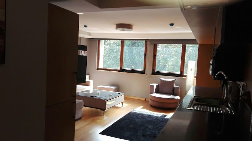 very comfortable flat in Istanbul - sisli - Huoneisto