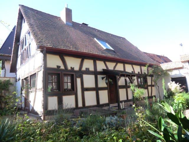 Gästehaus Sicurum Himmelblau - Dannstadt-Schauernheim - Huis