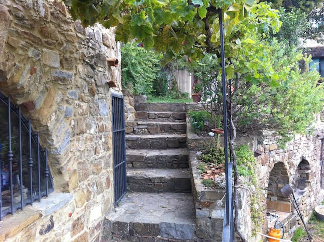 Old farmhouse in the mountains, sea and nature - Fornelli - Appartement