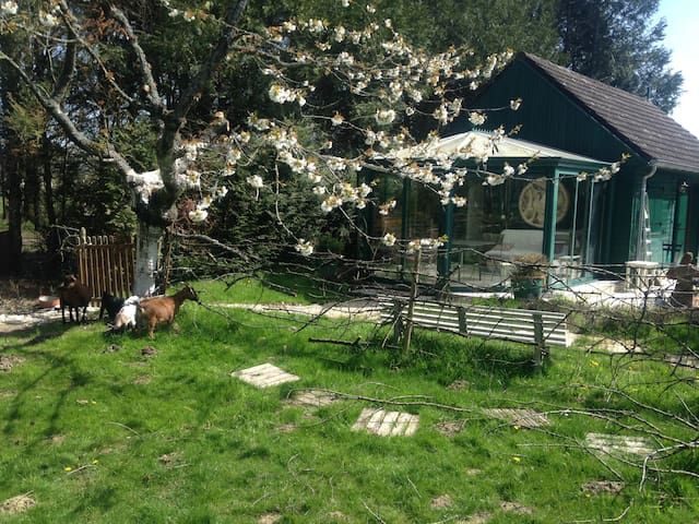 Chalet C : Nature haven next to forest - Le Perray-en-Yvelines - Casa
