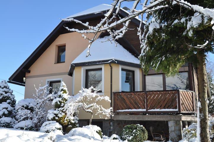 Cute home located between Maribor and Pohorje *** - Pivola - Leilighet
