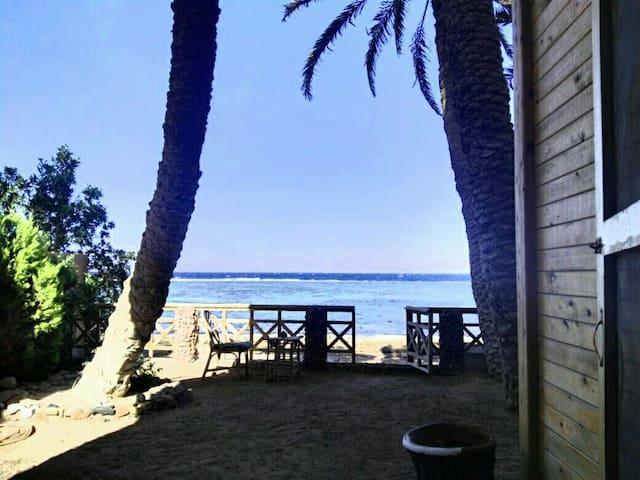 The beach house - Dahab - Casa