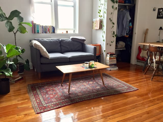 Top-Floor Studio In Quaint, Quiet Brownstone - Brooklyn - Wohnung