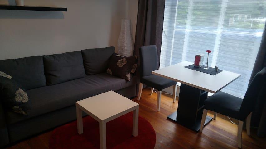 Comfortable apartment in Kiel-Friedrichsort - Kiel - Departamento