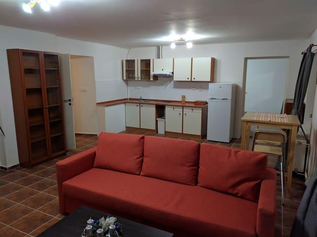 Large 2 room apartment near romantic Prague. - Buštěhrad