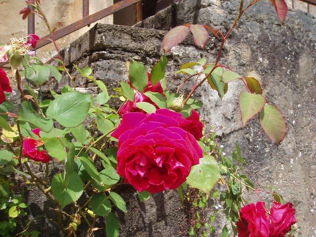 la fontaine du hameau - Mancey - Hus