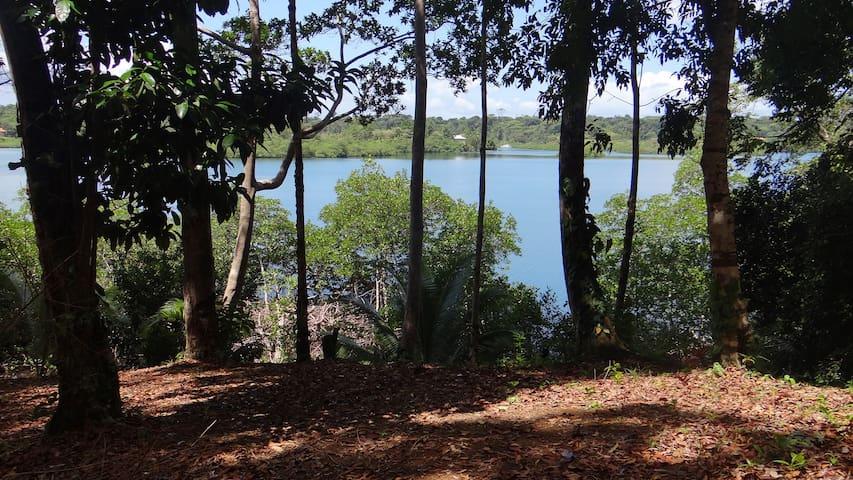 Jungle House - Birds,Monkeys, Flowers, Swim & Hike - Bastimento - Huis
