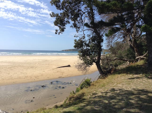 ACROSS THE LAWN TO THE SAND ,STUDIO - Safety Beach - Daire