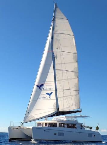 Übernachtung auf einem Lagoon 420 Katamaran - Andratx - Båt