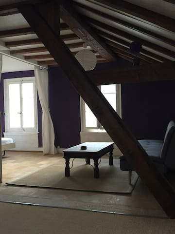 Nice apartment in Vevey city-center - Vevey - Huoneisto