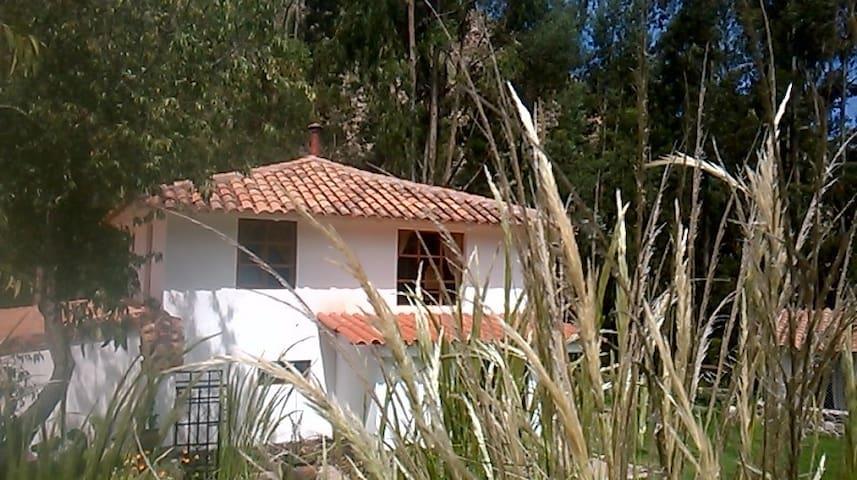 Riverside room with kitchenet - Urubamba - Daire