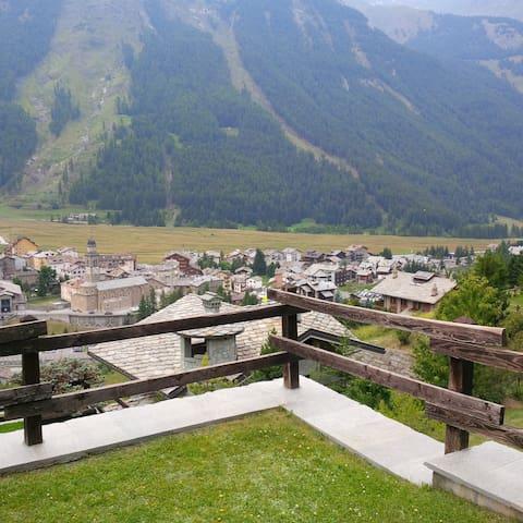 Grand Paradis - Cogne