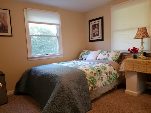 Private room in quiet suburban area w/private bath - East Northport