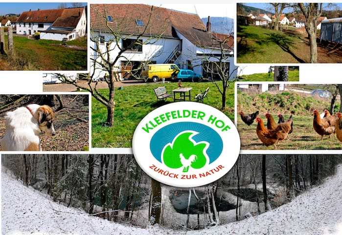 das Windrad freie Königsland - Hinzweiler - Casa