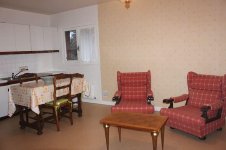 Appartement avec jardin et terrasse - Châtel-Guyon - Daire