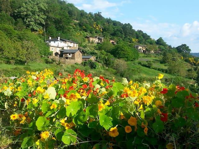 casa de piedra en un entorno rural - Lugo - Leilighet