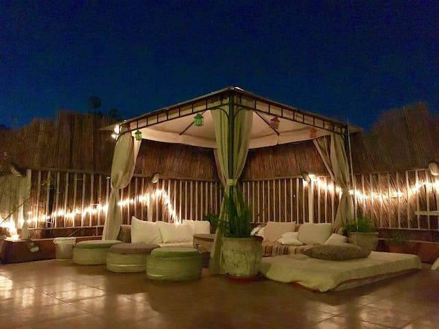 Cairo Rooftop Garden Studio - Cairo  - 公寓