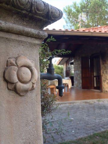 Accogliente casa indipendente - San Giovanni A Piro - Casa
